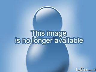 эротические фото девушек до пояса без лица